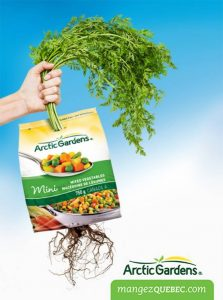 illustration-realiste-photo-emballage-feuillage-main-persil-alimentation-epicerie-arcticgardens