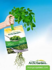 illustration-realiste-photo-feuillage-main-pois-alimentation-emballage-arcticgardens
