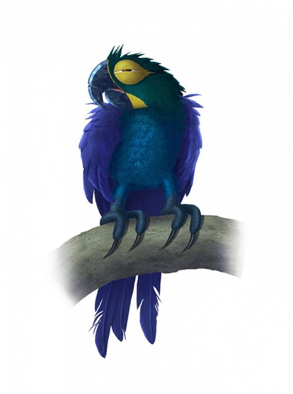 concept-perroquet-parrot-lear-animation-cartoon-3d